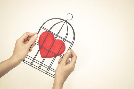 손 안에 붉은 마음 조류 케이지를 들고  금단의 사랑 개념