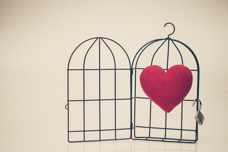 insincere: A red heart in opened bird cage  Love and freedom concept