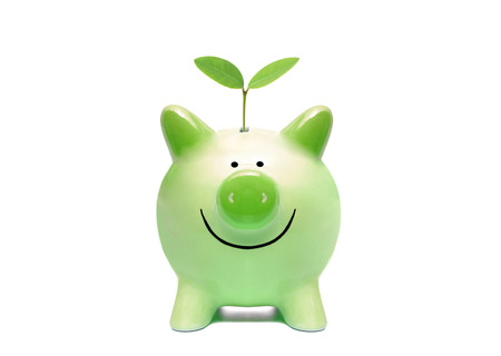 csr: Green piggy bank with a young green plant isolated  Green business concept Stock Photo
