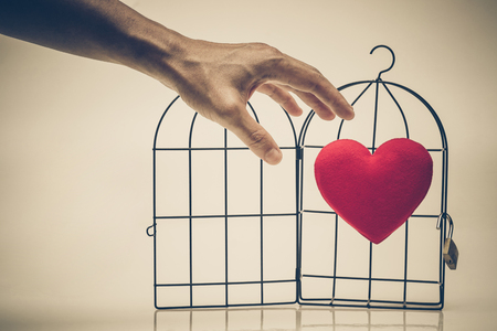 Hands trying to grab a red heart in a bird cage  Forbidden love concept
