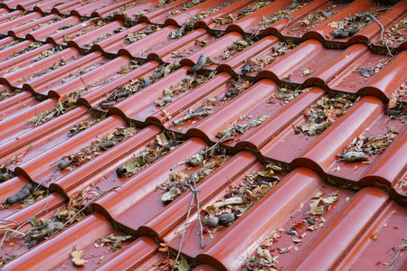 Old leaves on the roof of a house
