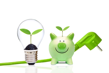 Zielona wtyczka z zielonym piggy bank i żarówka z małych zielonych roślin / zielonej energii i koncepcji środowiska oszczędności