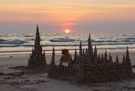 Sunset with sand castles and a dog at the Chao Lao beach of Chantaburi, Thailand Standard-Bild - 126832439