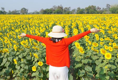 A woman standing in front of a beautiful sunflower field in sunny day