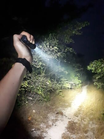 Hand holding a flashlight throwing light on a single track in the forest Stockfoto