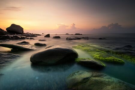 Strange rocks and moss in the morning at Co Thach beach tuy phong, Binh thuan province Vietnam