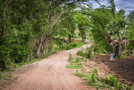 Dirt road towards forest on a green beautiful summer day with cloud blue sky and Asian man