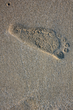 self indulgence: Footprints in a beach
