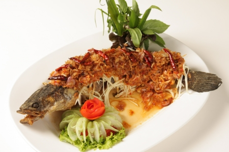 Fried herb fish sauce  Food of Thailand