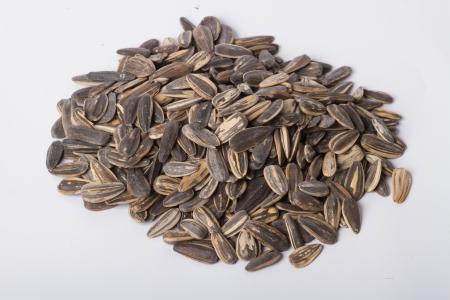 semen: Sunflower seeds Taken on a white background
