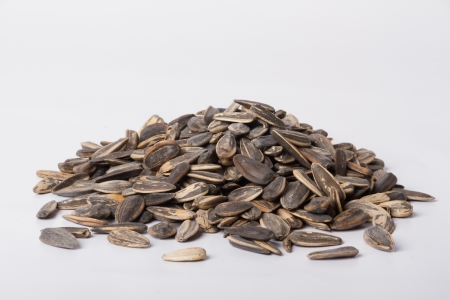 Sunflower seeds Taken on a white background photo