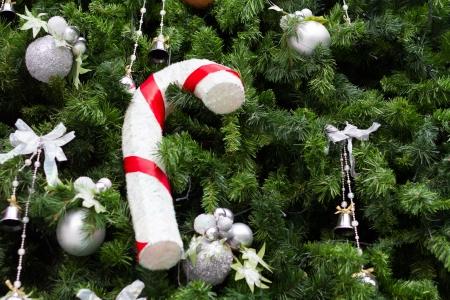 Gift box with Christmas trees