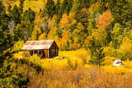 Wooden Cabin With Tin Roof In Mountains With Changing Fall Colors Stock Photo