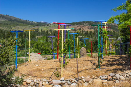 stakes: Colorful T Posts For Vines In Mountains Stock Photo