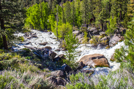 ragged: Rushing Waters In Stream From Snow Melt Stock Photo