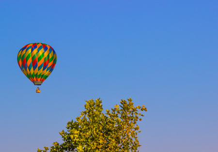 Multi Colored Hot Air Balloon Above Treeline