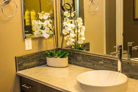 Modern Bathroom With Corner Plant & Unique Sink