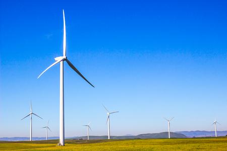 Three Bladed Energy Producing Windmills