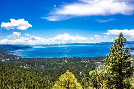 Forest & Shoreline Around Lake Tahoe Stockfoto
