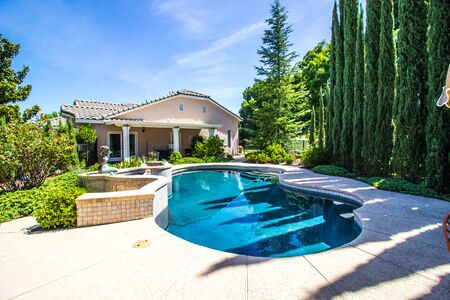 Private Free Form Swimming Pool With Mediterranean Cypress