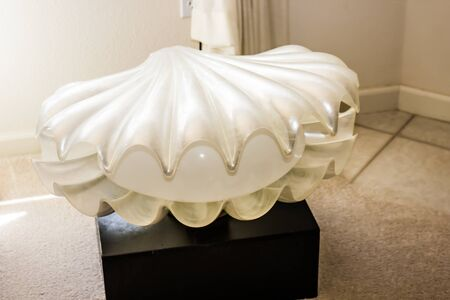 Unique Plastic Clam Shell Light