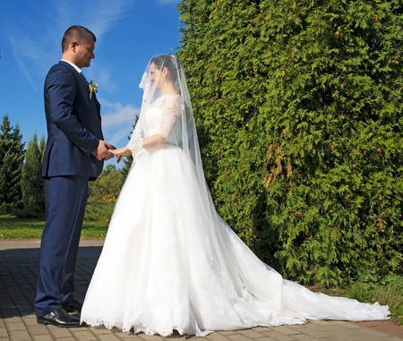 marry: Beautiful bride and groom marry in park.Wedding outdoor Stock Photo