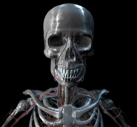 Silver Skeleton Banco de Imagens - 17796162