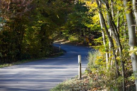 Autumn landscape on a sunny day