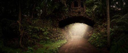 Old stone bridge in the jungle