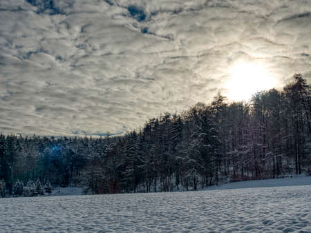 A beautiful picture of a snowy forest, an intresting photo