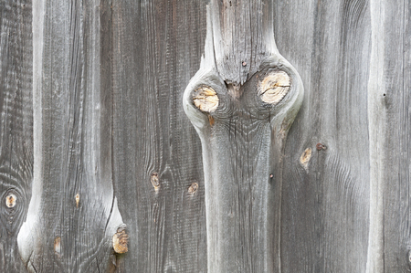 White material of wood with knotholes