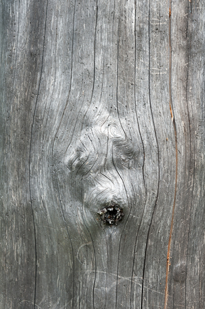 Silver wood texture with 3 knotholes in it