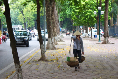 Seller with Bamboo Basket was selling a fruit in Ha Noi. Travel in Vietnam. Year 2011, August 6th.