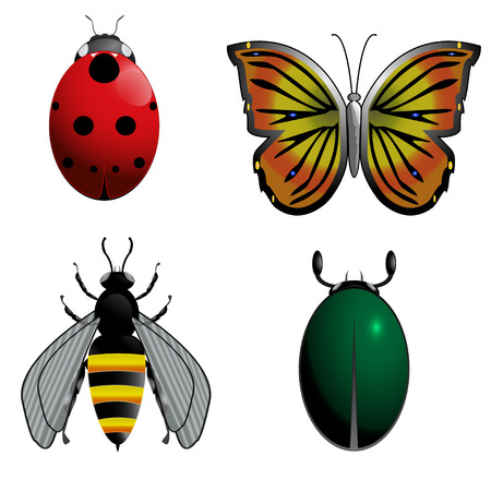 pollinator: Color set of four bugs Illustration