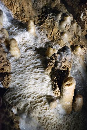 Waitomo Caves New Zealand taken in 2015