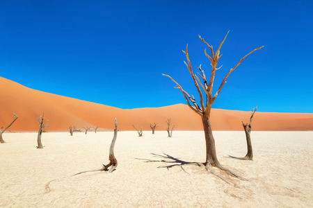 Dead Vlei in Naukluft National Park, Namibia, taken in January 2018 Stock Photo
