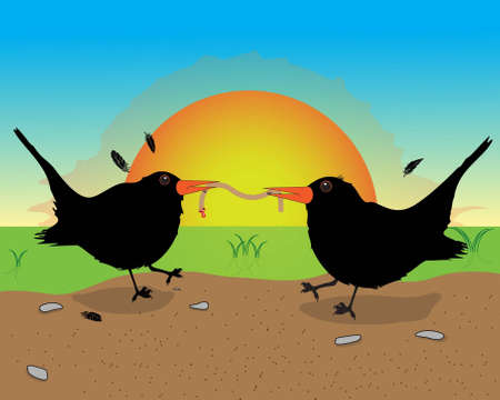 Blackbirds with food  Illustration