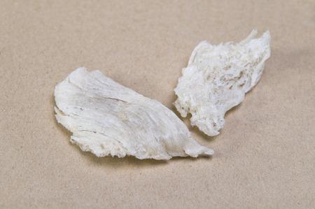birdnest: High Quality Crystal Clear Edible Birdnest  Bird Nest Close Up