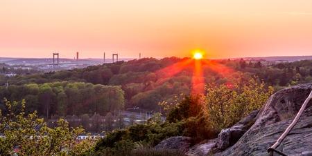 beautiful sunset at botanic garden