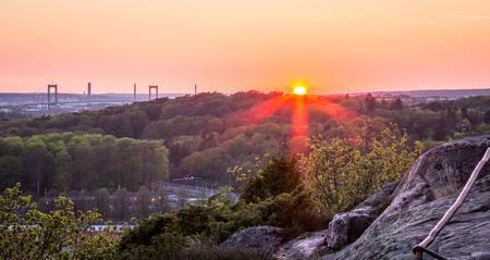 lonley: beautiful sunset at botanic garden