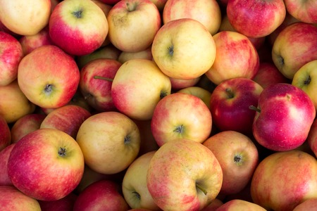 A bunch of appetizing yellow-red apples at weekly market