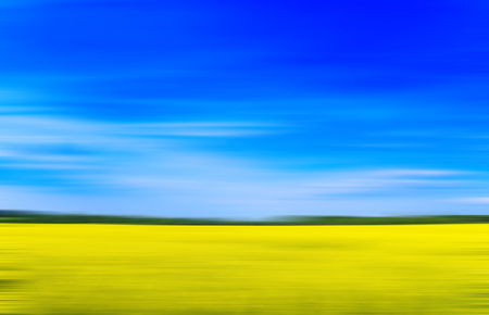 Blooming rape field with motion blur effect. Imagens