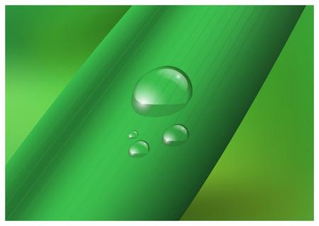 droplets: Water drop, droplets on leaf vector illustration