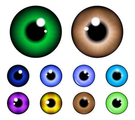ojos marrones: Conjunto de pupila del ojo, bola del ojo, ojo iris. Ilustración vectorial realista aislado sobre fondo blanco.