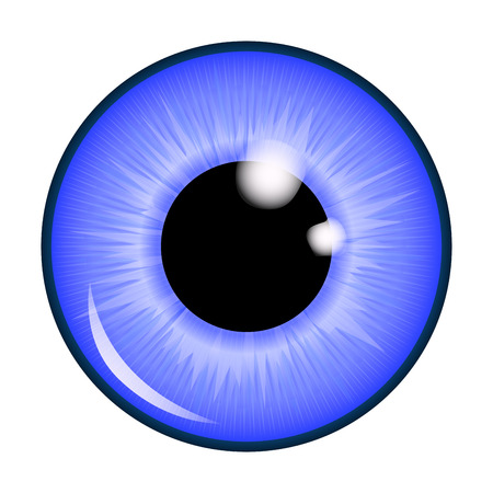 The pupil of the eye, eye ball. Realistic vector illustration isolated on white background. Stok Fotoğraf - 45594979