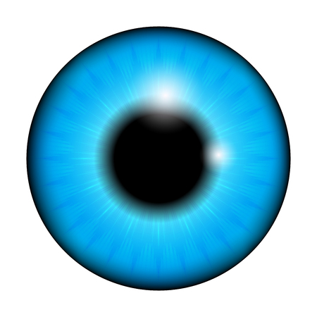 The pupil of the eye, eye ball. Realistic vector illustration isolated on white background.