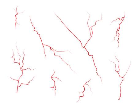 vasos sanguineos: