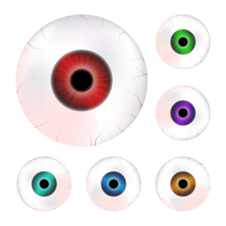 Image of realistic human eye ball with colorful pupil, iris. Vector illustration isolated on white background. Illustration