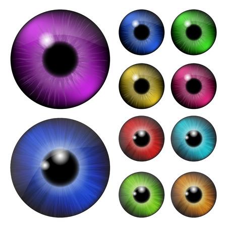 ojos marrones: Conjunto de pupila del ojo, bola del ojo, ojo iris. Ilustraci�n vectorial realista aislado sobre fondo blanco.