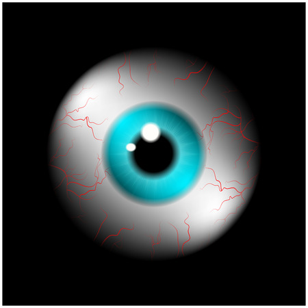eye ball: Image of realistic human eye ball with blue pupil, iris. Vector illustration isolated on black background.